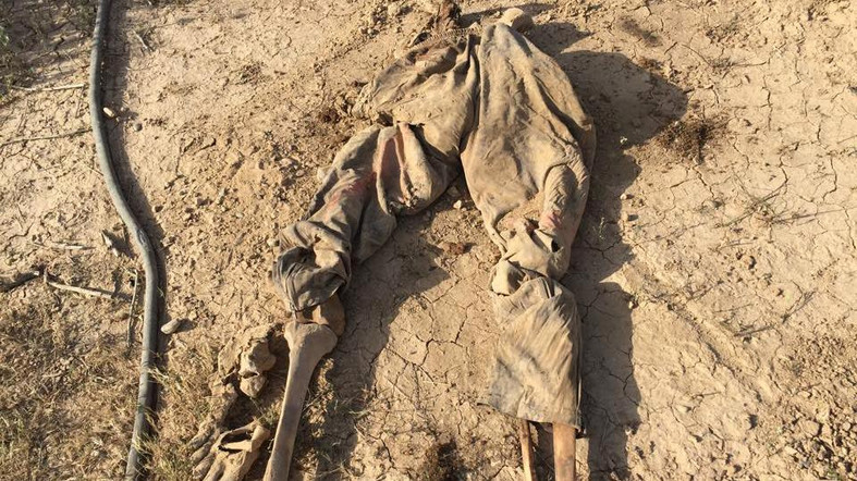 Iraqis find three more mass graves in formerly ISIS-held Sinjar