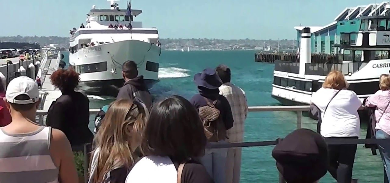 OMG! Whale watching boat crashes in San Diego dock!