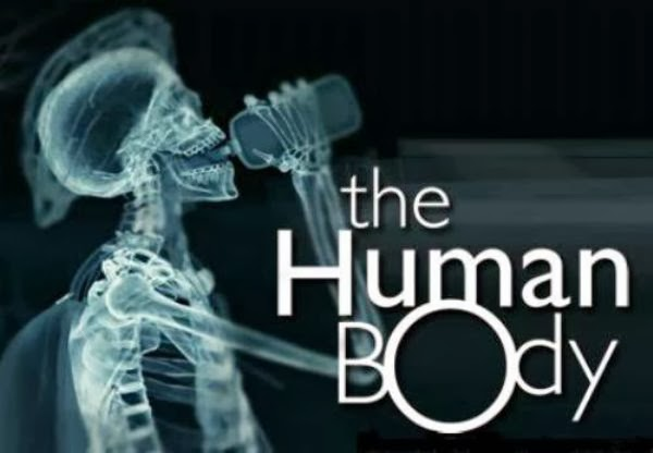 the 20 little known facts about the human body