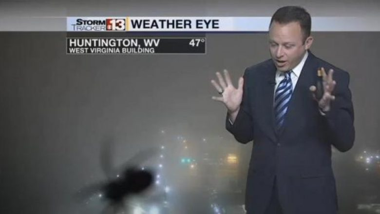 TV-weatherman-startled-by-giant-spider