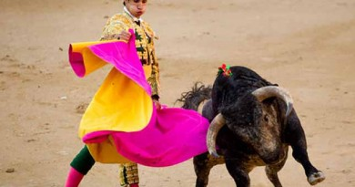 Bullfighter fatally gored on TV during live broadcast (VIDEO)