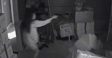 WOW!! Video shows woman exchanging gunfire with burglars during home invasion