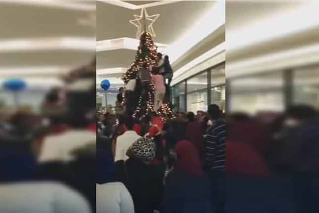 Muslims see a mall Christmas tree, they then start ATTACKING IT! (VIDEO)